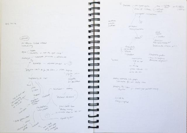 "(My handwritten notes for the session ""How and What to Edit in Visuals Accompanying Text"")"